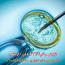 افزایش موفقیت IVF با طب سوزنی لیزری و لیزر گوش
